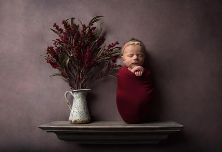 newborn photographer wausau