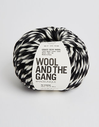 Wool and the Gang Crazy Sexy Wool - TV Static