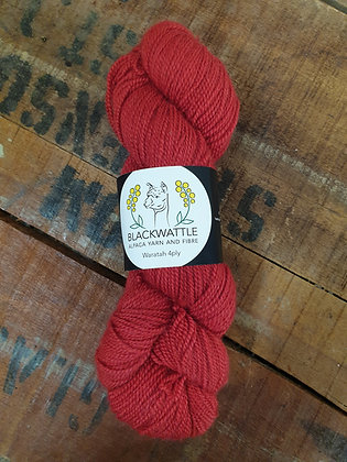 Blackwattle Waratah 4 Ply - Secret Scarlet