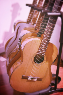 STUDIO D ACOUSTIC GUITARS