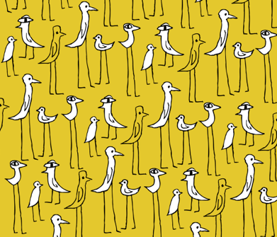 ILLO QUIRKY BIRDS