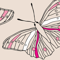 other_patterns_sketchy_butterfly_2_3