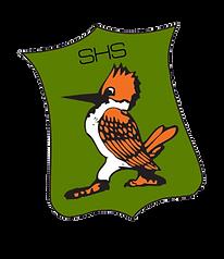 Green Team Logo.png