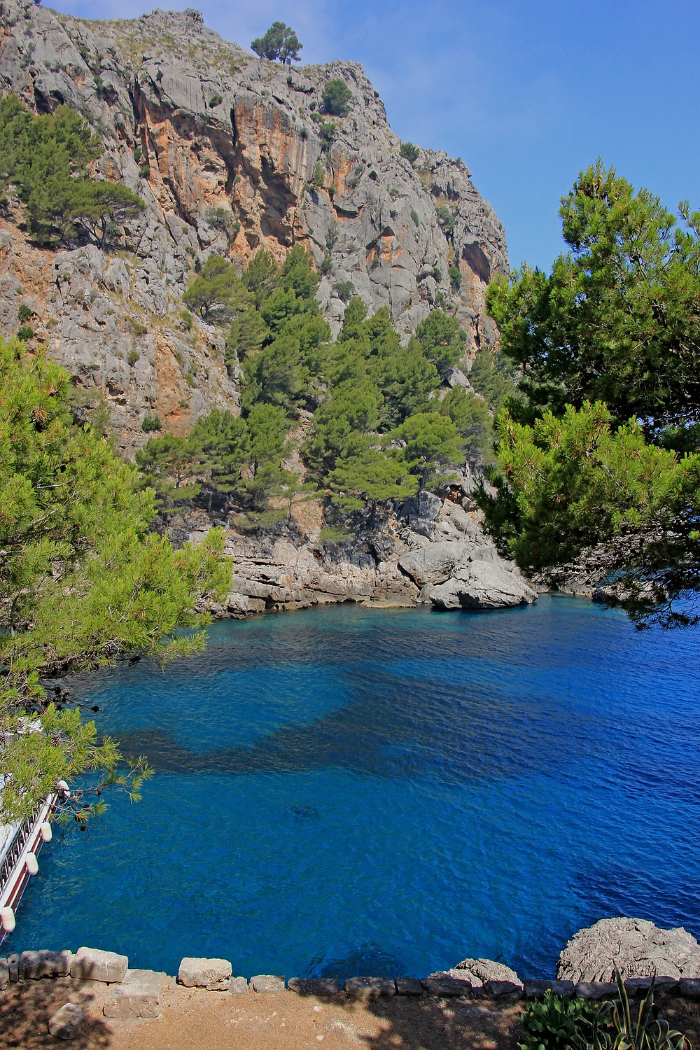 A mediterranean bay in Mallorca, showing rocky cliffs, lush green pine trees and see in a deep, rich blue.