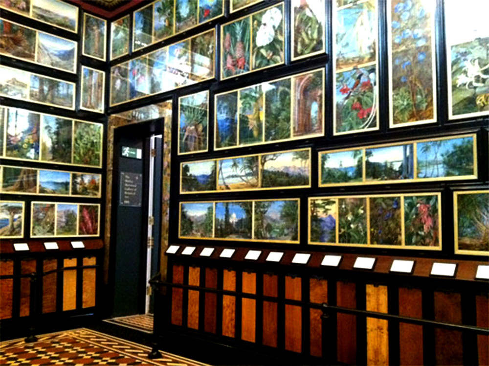 An image of an art gallery filled to the ceiling with paintings that cover every inch of the walls except for the area beneath the dado, where there are samples of wood collected from all corners of the world.