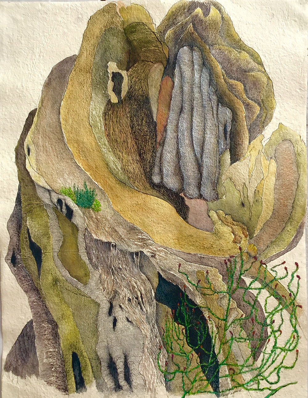 Fine art drawing in yellow ochre, yellows, greens, greys, red ochre and light browns. Interesting and varied  textures created using the rough surface of the paper, as well as finely drawn in pen and ink.