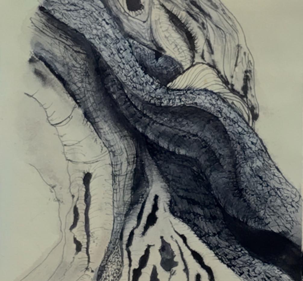 Deep Rooted.jpg