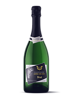Champagne Bottle BRUT MAGNUM - DAMES DES