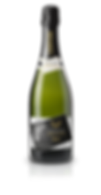 BRUT PNG + OMBRE.png
