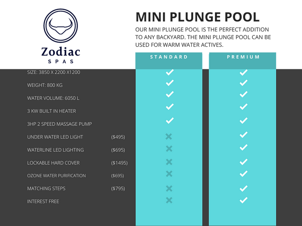 MINI PLUNGE POOL -2.png