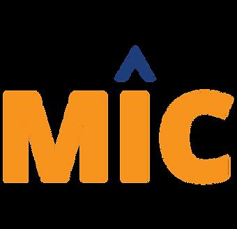 MIC Evaluaciones Psicometricas
