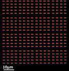 pixel array.PNG