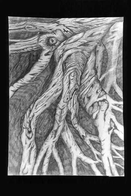 drawings 85