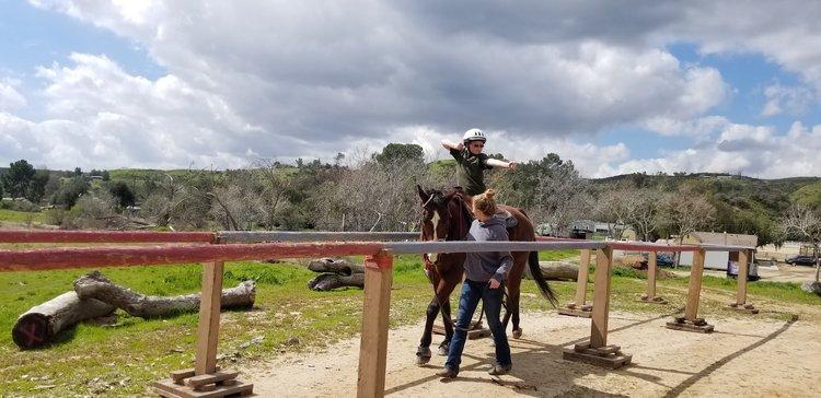 Horse Rides
