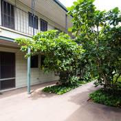 Ohua Gardens--Waikiki