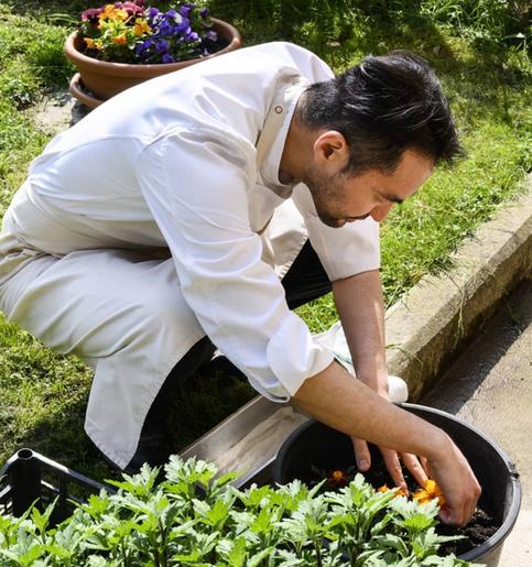 Chef Takeshi Iwai
