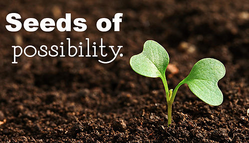 Seeds-of-possibility1.jpg