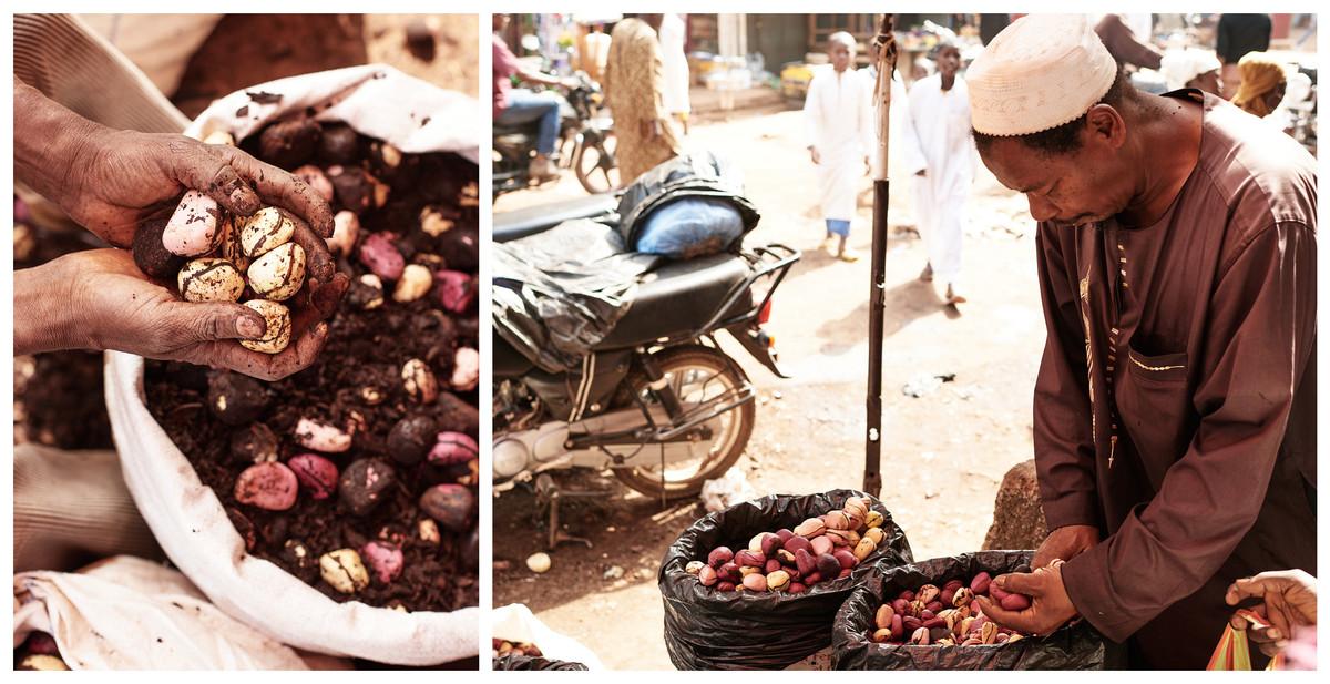 Kola nuts at market, Modiya