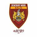 Dewsbury Moor logo.jpg