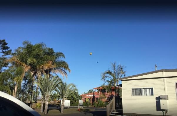 WBCP Balloon.jpg