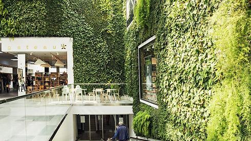 Green Fortune Plantwall Caroli Sweden 3.