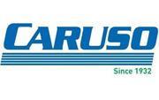 Caruso Logistics.jpg