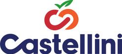Castellini_Logo_V_Color_Dark.jpg