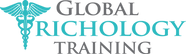 GTT-logo-Alonso.png