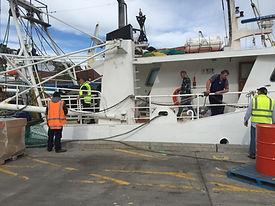 ニュージーランド船.JPG