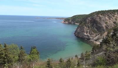 カナダの風景.png