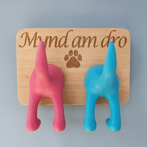 Mynd Am Dro Dog Lead Hanger Double