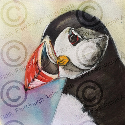 Puffin Mounted Print