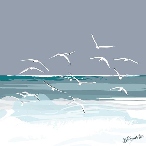Gulls in Grey Skies