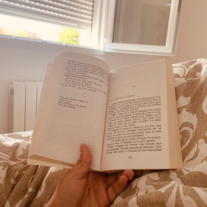 Pourquoi je n'aime pas les classiques de la littérature