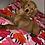 Thumbnail: Teddy