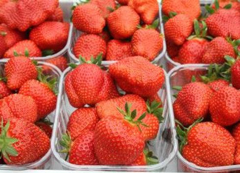 Aardbeien (2 dagen op voorhand)