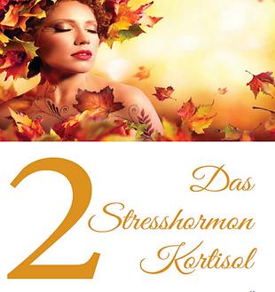 Das Stresshormon kortisol_edited_edited.