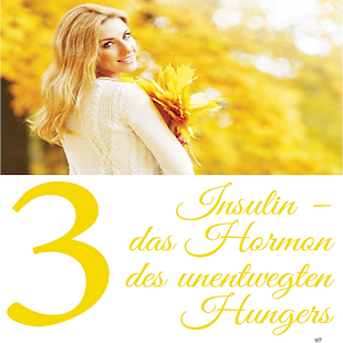 Insulin_–_das_Hormon_des_unentwegten_Hun