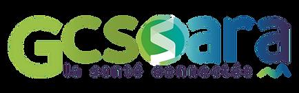 Logo_SARA_declinaisons_v2_CMJN_couleurs-