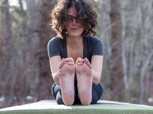 Yoga Video Library