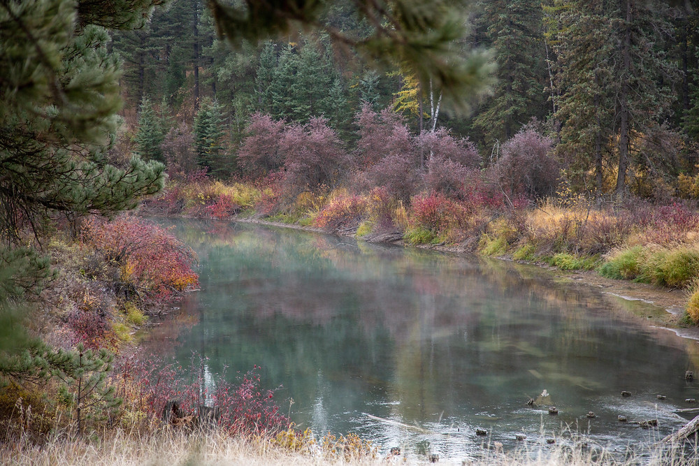 misty river at the Dancing Spirit Ranch, October 2018