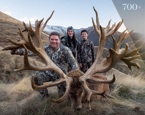 New Zealand Red Stag hunting -  23+ square miles private land