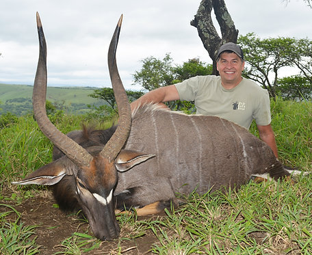 Free Range Hunting South Africa