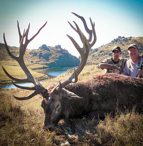 Red Stag Hunting in Argentina - traditional horseback hunt
