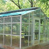 greenhouse1_edited.jpg