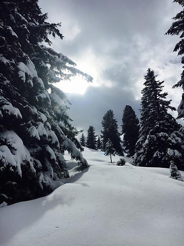 Winter auf einsamen Pisten