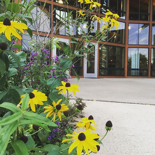 patio & native plants.jpg