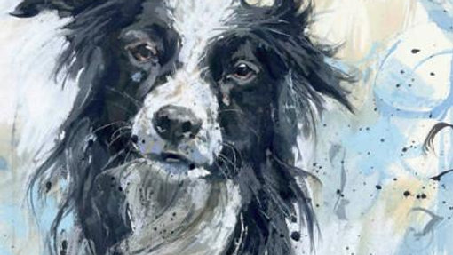 Border Collie large greeting card