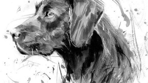 Black Labrador large greeting card