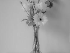Beauty will Save us- Flowers II